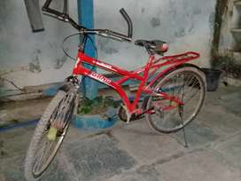 Gang cycle in full condition