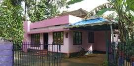 Near Anikkad companypady (Muvattupuzha)