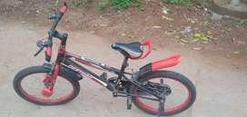 Destrro bicycle