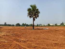 Lowest Price Plots for Sale in Shamshabad in Hyderabad
