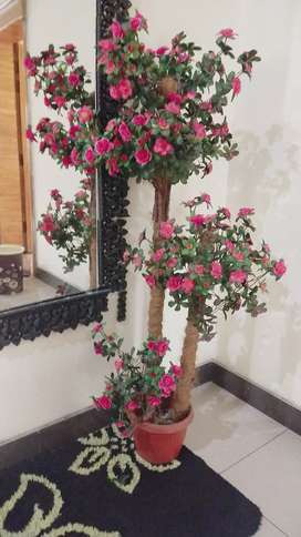 Flower decoration in New condition