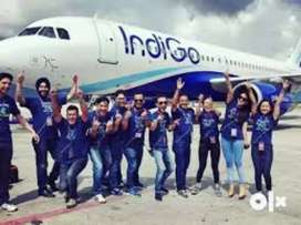 Good opportunity for all candidates in Airline for Ground staff