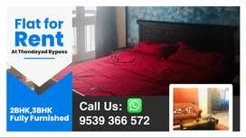 2 and 3 BHK Fully Furnished Premium Fresh Flats for Rent in Thondayadu