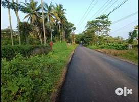 100 acres original land in BTR at highway front vaikom rs 18000/cent