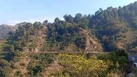 200 nali land 4 sale yumkeswar road