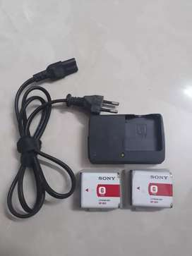 Sony Camera Battery with charger