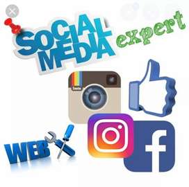Hiring Social Media Expert for Real Estate Company