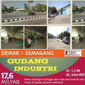Dijual cepat gudang siap pakai Demak Semarang Jawa Tengah 17,6M