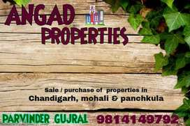 Hig upper flat  newly renovated 3bhk 1st floor in sector 43 chandigarh