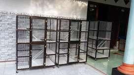 Rumah kucing idaman