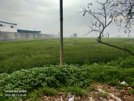 Plot for sale on Main road