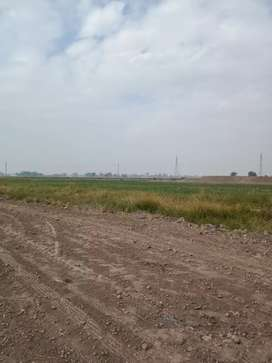 agriculture land for sale near balkhay interchange Lahore