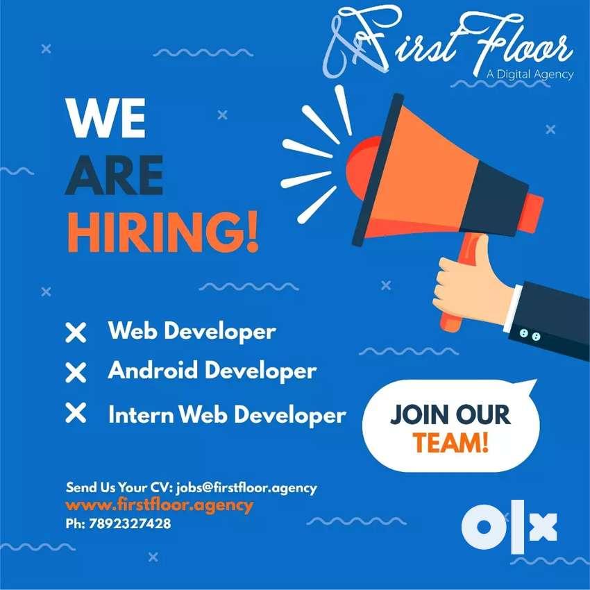 Android developer, web developer 0