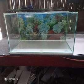 aquarium homemade