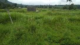 Jual Tanah 7 Hektar di Jl. Raya Cipanas