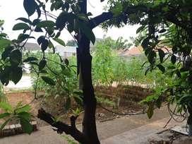 Kavling di Tomang Raya