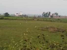 6.5 Acres land for sale at Gangapada
