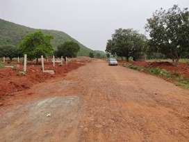 HOUSING PLOT IN LUSH GREEN NON POLLUTED AREA IN VIZAG CITY.