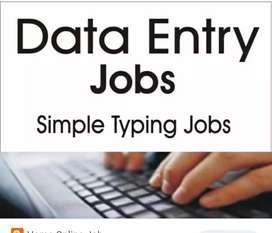 I am a data entry professional