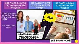 Work from home Get paid Data Entry part time