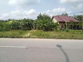Dijual cepat tanah di jl Siak - mempura