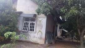 Rumah Dijual daerah Rajabasa luas tanah 320m2