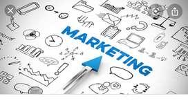Marketing job vacancies in finance garment loan department Fresher and