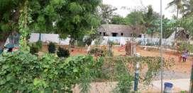 Green Homes DTCP Plot for Sale @ Mannivakkam