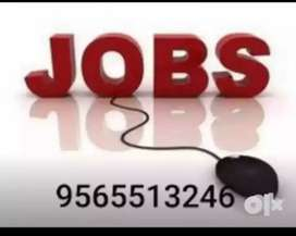 Wanted can didate for data entry job and link uploading job
