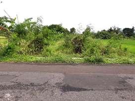 Tanah Murah di Jalan Godean KM 9