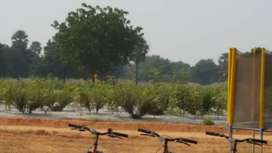 Sandalwood Farm plots for Sale at Warangal highway