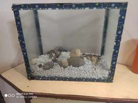Fish tank with White Stones