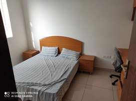 SOHO OFFICE SPACE FULLY FURNISHED 16500/-