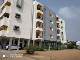 1BHK Affordable apartments for sale at near violet school road.