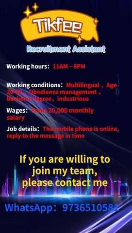 Tik-fee online earning . Monthly salary is10K-30K