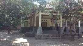 Tanah dan rumah di Lingsar