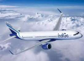 OFFERING FULL TIME JOB IN INDIGO AIRLINE COMPANY!