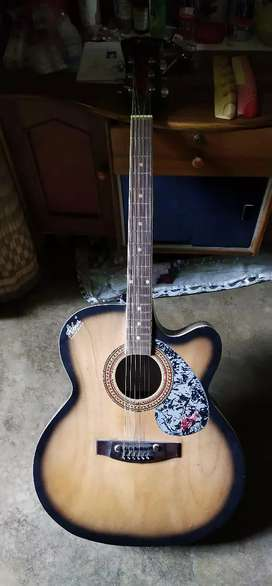 Hobnor guitar