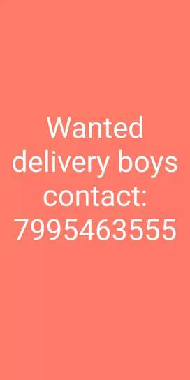 Wanted delivery boys in pakala