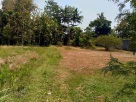 Harga Teman Mari Beli Tanah Pekarangan Dekat Pasar Cebongan