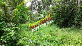 53 Cents Of Land Near VIZHINJAM Suitable For Villas...SudheerJeeS...