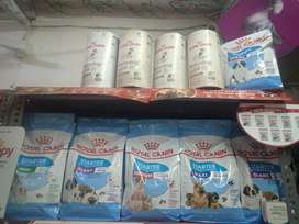 All Kinds Of Royal Canin Dog Food Available Here At 15% OFF Hurry Up