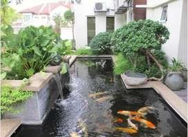Jasa buat Taman dan kolam ikan