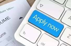 Sales officer required for office