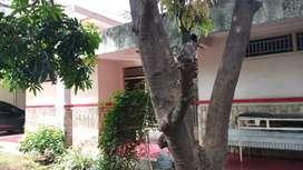 Dijual rumah di Johar Baru