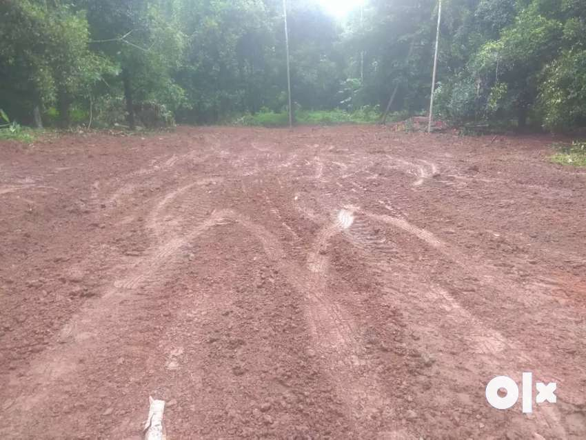 5 cent House plot for sale at Angamaly Karukutty,ലോൺ സൗകര്യം ലഭ്യമാണ് 0
