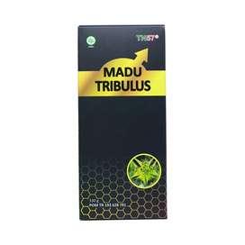 Madu Tribulus (khusus Pria)