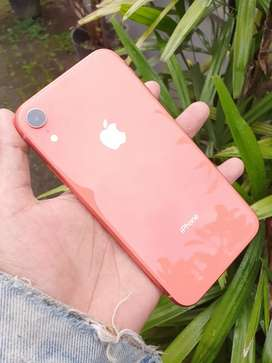 iPhone XR 64GB Fullset Normal