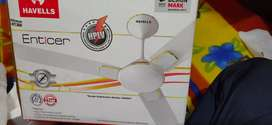 New box pack havells 48 inch celling fan
