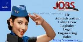 Airlines Ground Staff / Airport Customer Service Assistant